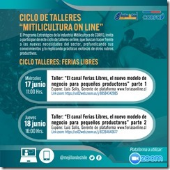 taller Ferias Libres (1)