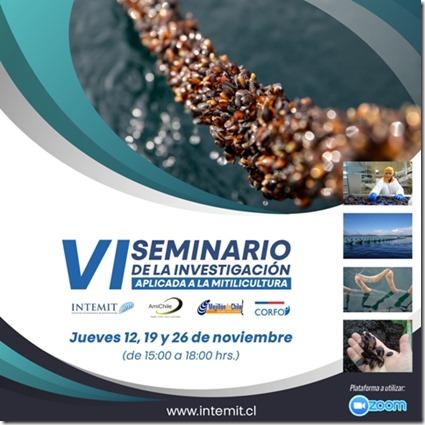 VI Seminario2020