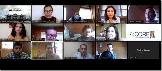 Reunion Core de Chiloé y Servicio de Salud