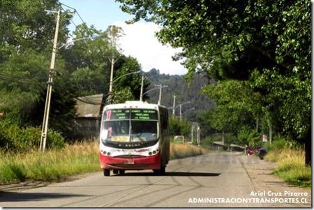 Buses rurales 1